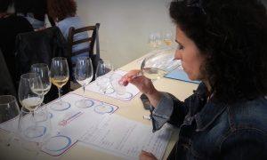 Valutazione vini