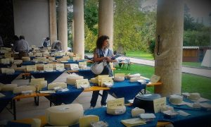 Giudice concorso formaggi